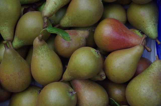 bristol cross pears