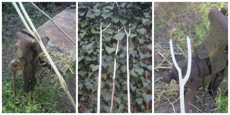 hop twiddling stick, home brewing, english hops, in the hop gardens, seasonal hop work,hops for the home brewer