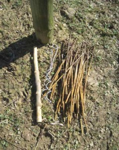 screw pegs, hop growing, hop viniculture, hop setts,