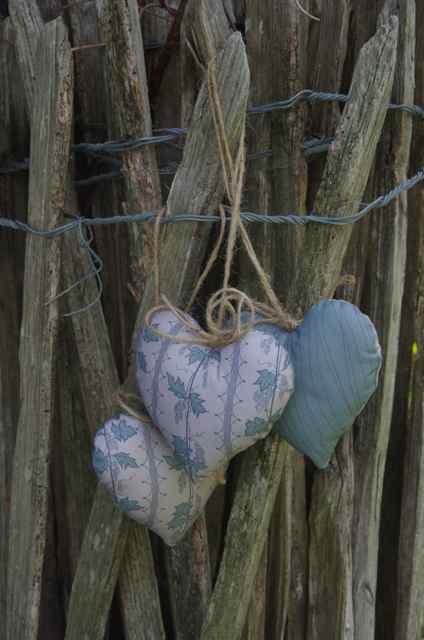 hoppy hearts