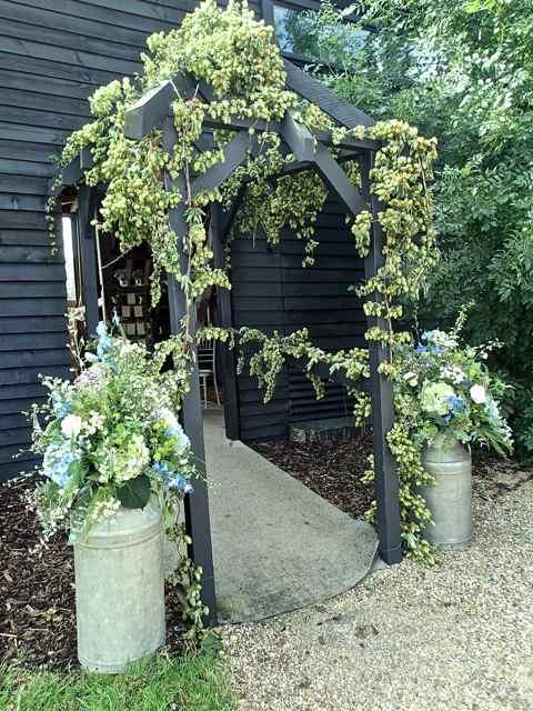 hops for weddings